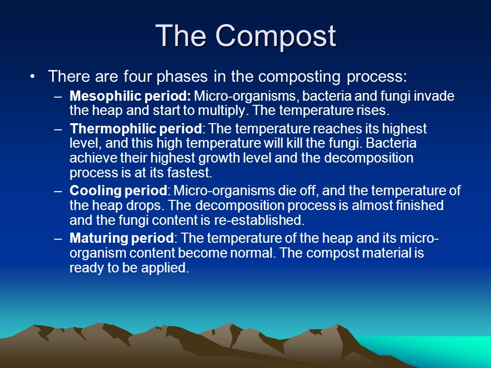 The Compost There are four phases in the composting process: