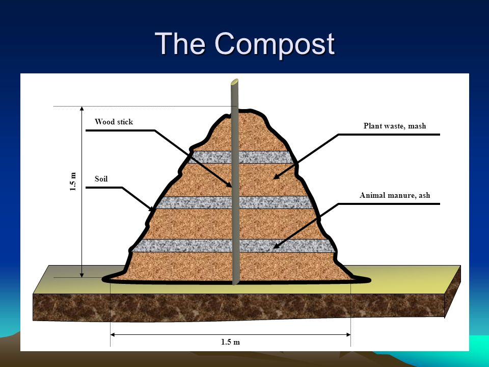 The Compost Wood stick Plant waste, mash 1.5 m Soil Animal manure, ash
