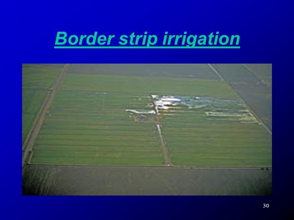 Border strip irrigation