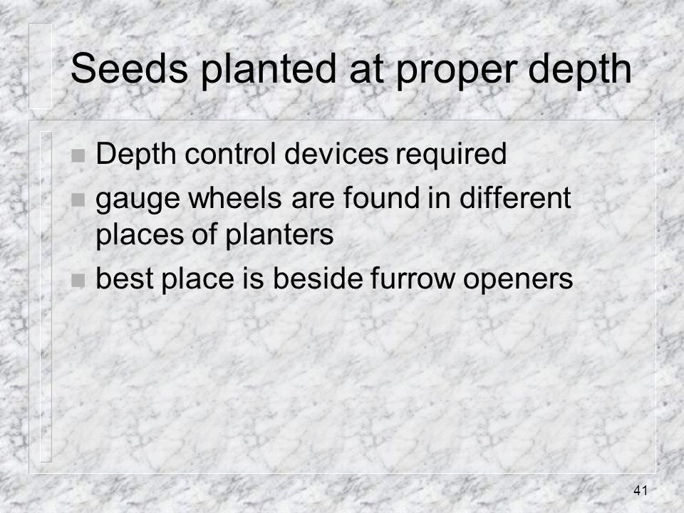Seeds planted at proper depth