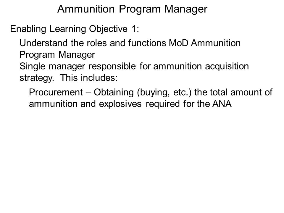 Ammunition Program Manager