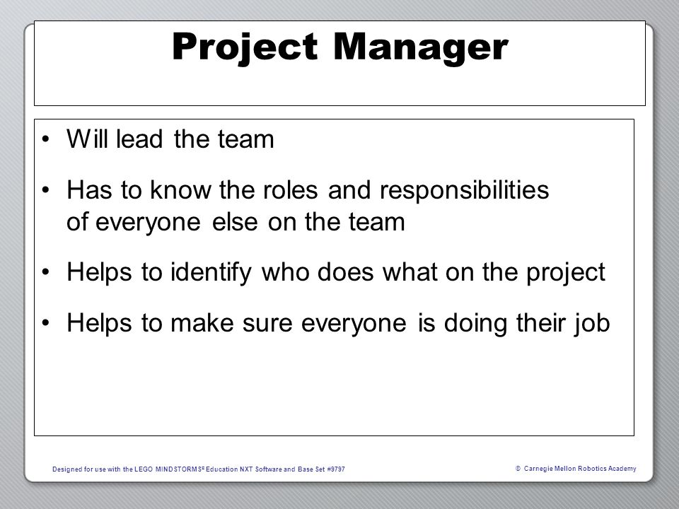Project Manager Will lead the team