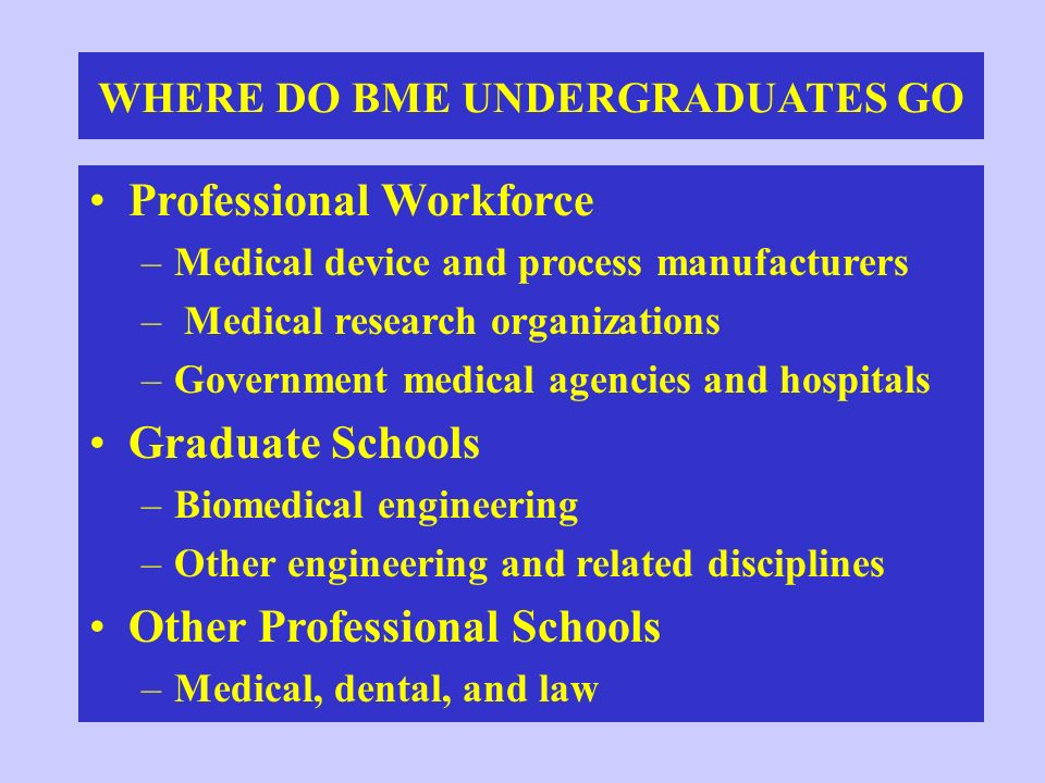 WHERE DO BME UNDERGRADUATES GO