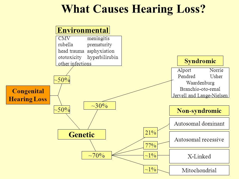 What Causes Hearing Loss Congenital Hearing Loss