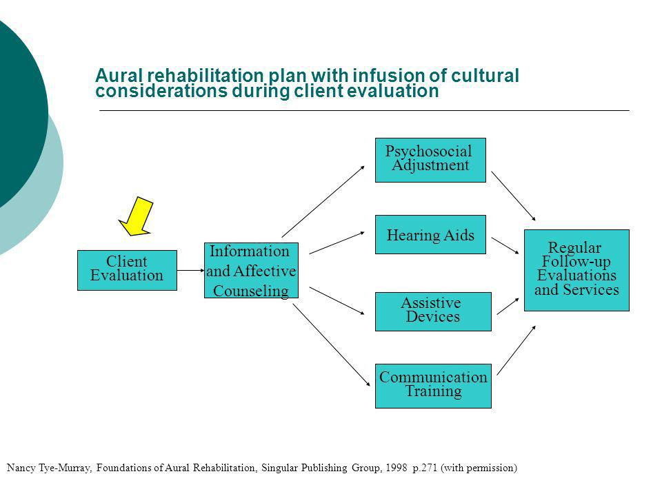 Aural rehabilitation plan with infusion of cultural considerations during client evaluation