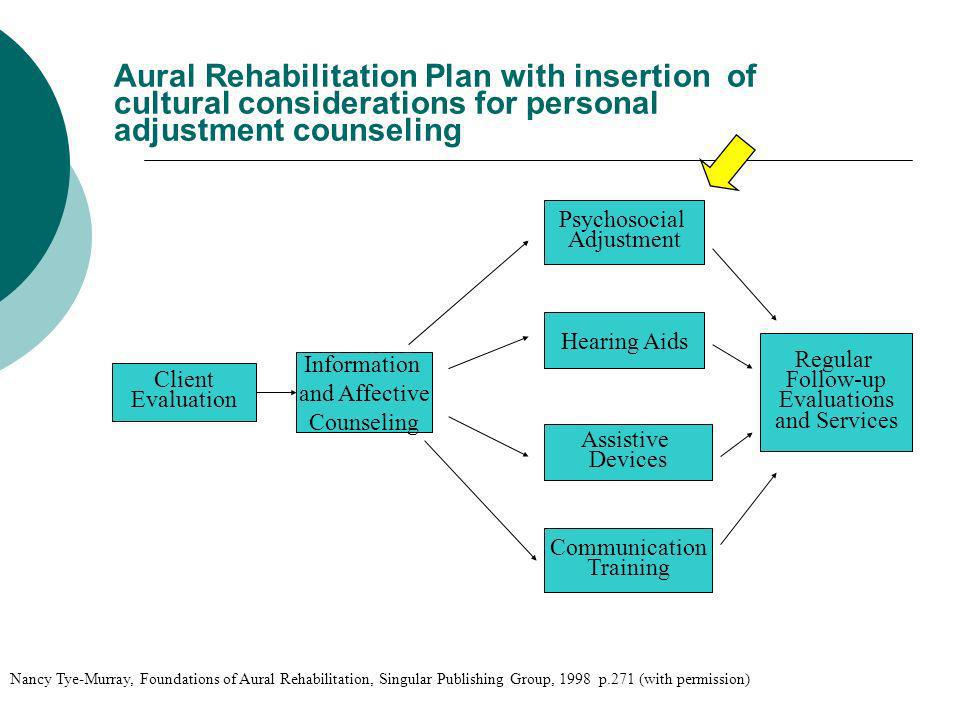 Aural Rehabilitation Plan with insertion of cultural considerations for personal adjustment counseling