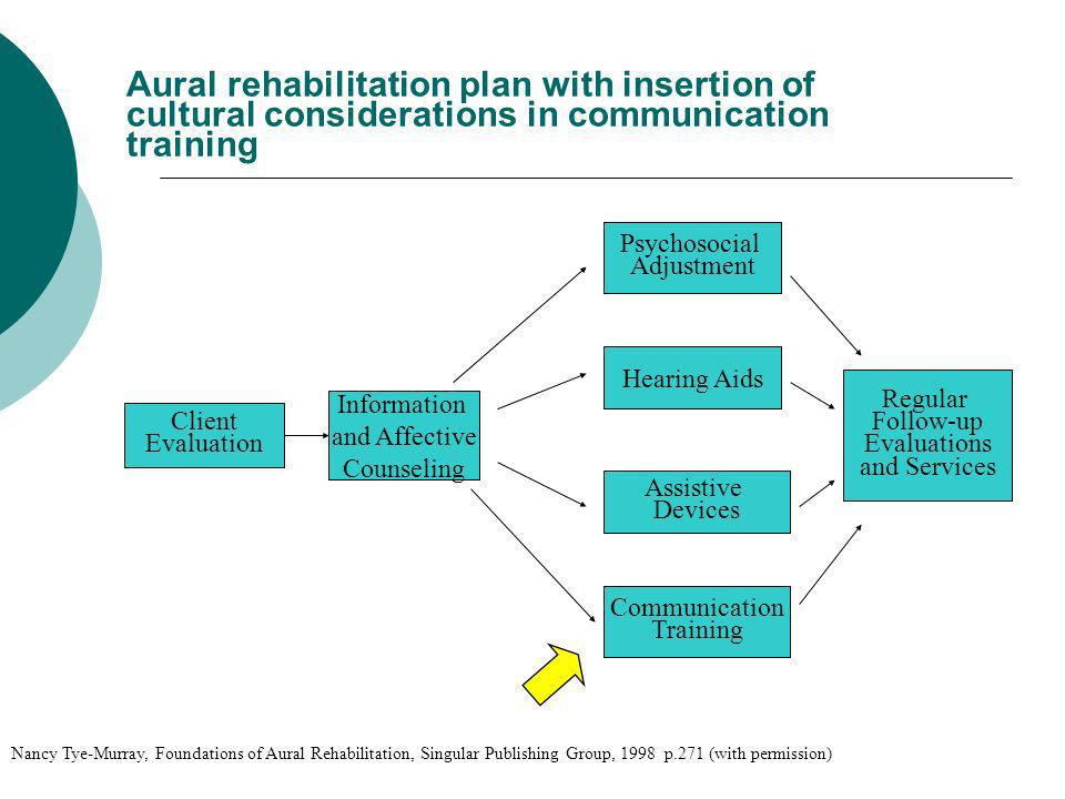 Aural rehabilitation plan with insertion of cultural considerations in communication training