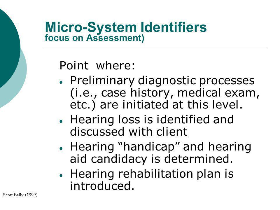 Micro-System Identifiers focus on Assessment)