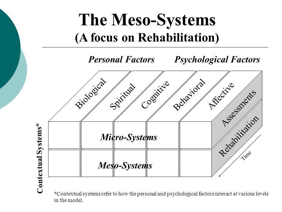 (A focus on Rehabilitation)