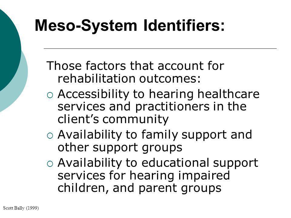 Meso-System Identifiers: