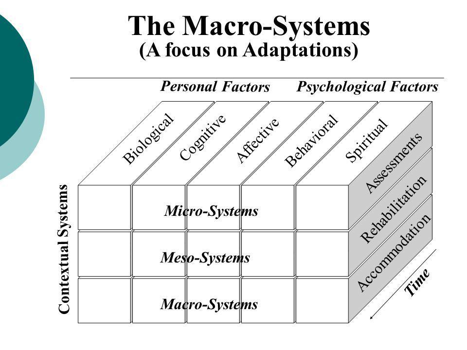 (A focus on Adaptations)