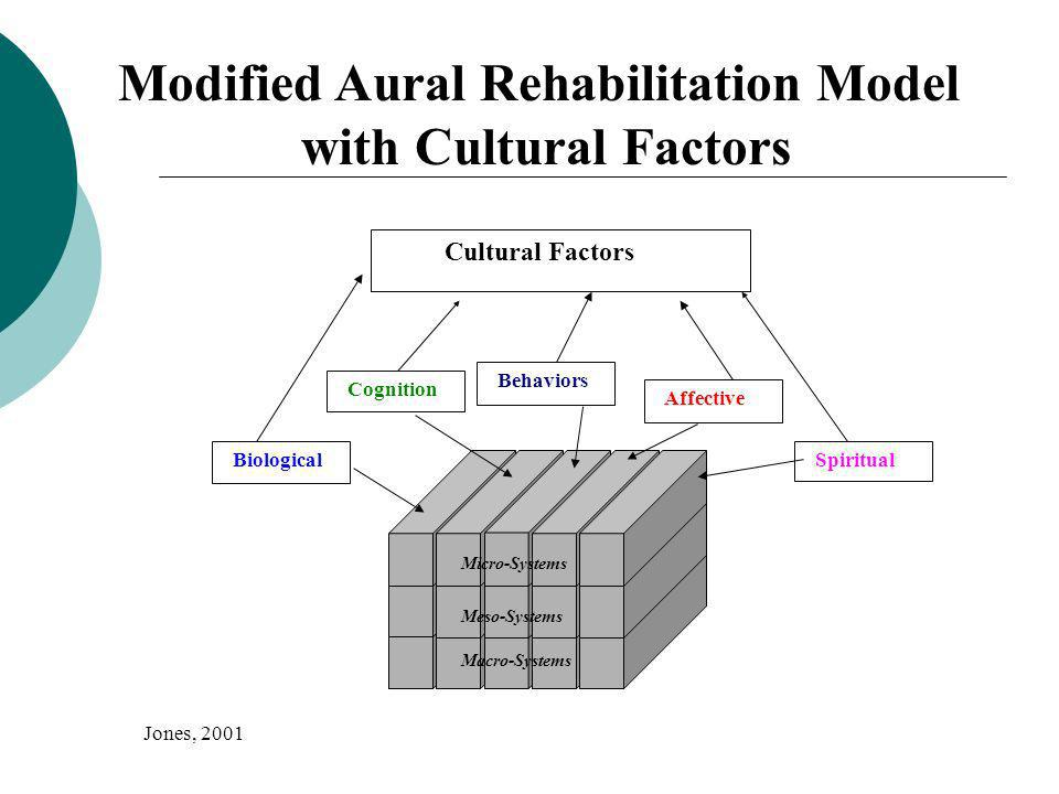 Modified Aural Rehabilitation Model