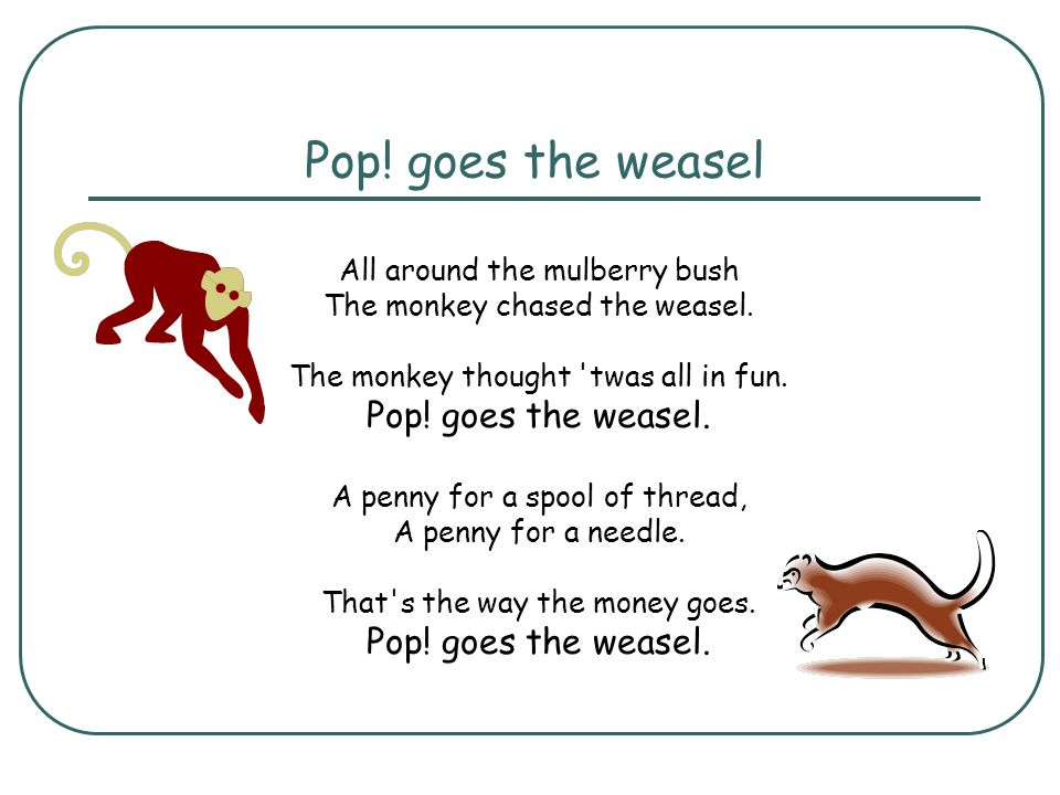 Pop! goes the weasel All around the mulberry bush The monkey chased the weasel. The monkey thought twas all in fun. Pop! goes the weasel.