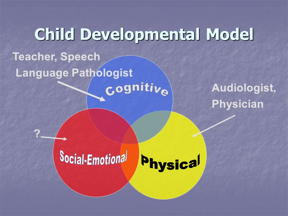 Child Developmental Model