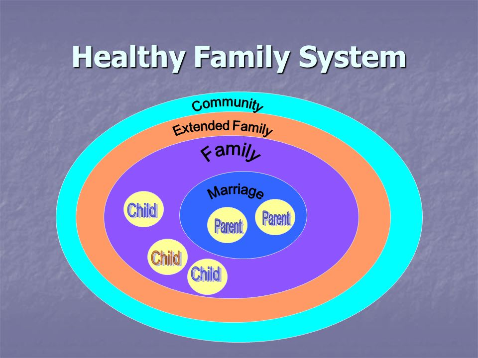 Healthy Family System Community Extended Family Family Marriage Child