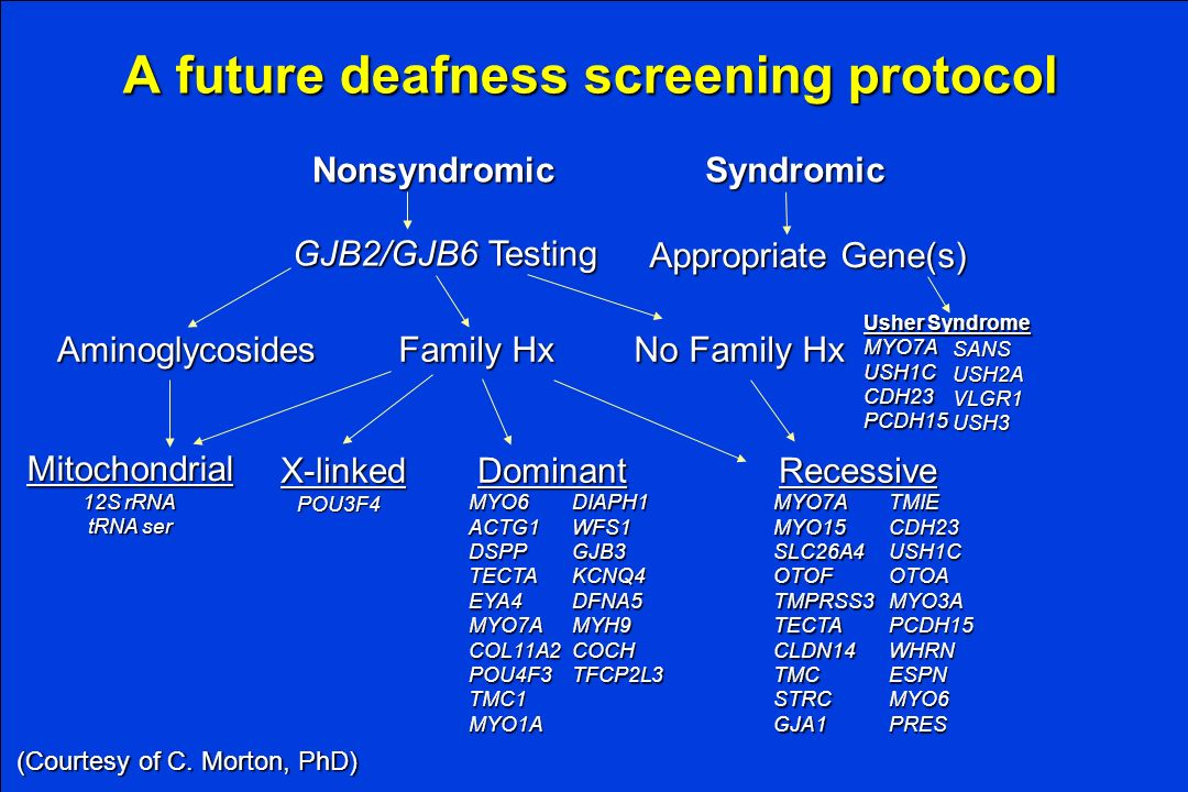 A future deafness screening protocol