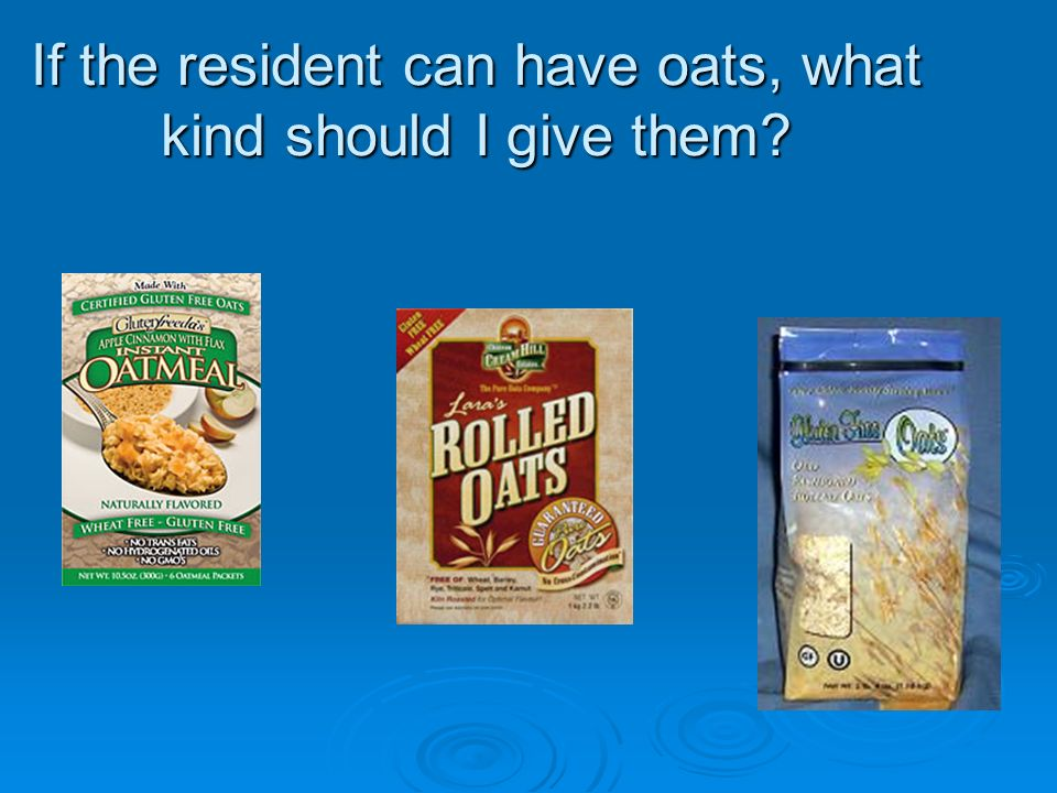 If the resident can have oats, what kind should I give them