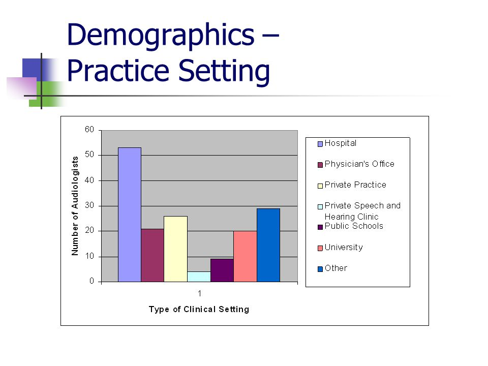 Demographics – Practice Setting