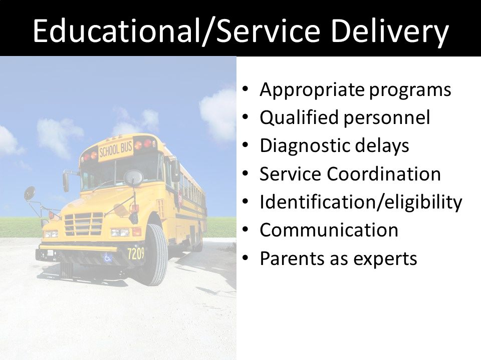 Educational/Service Delivery