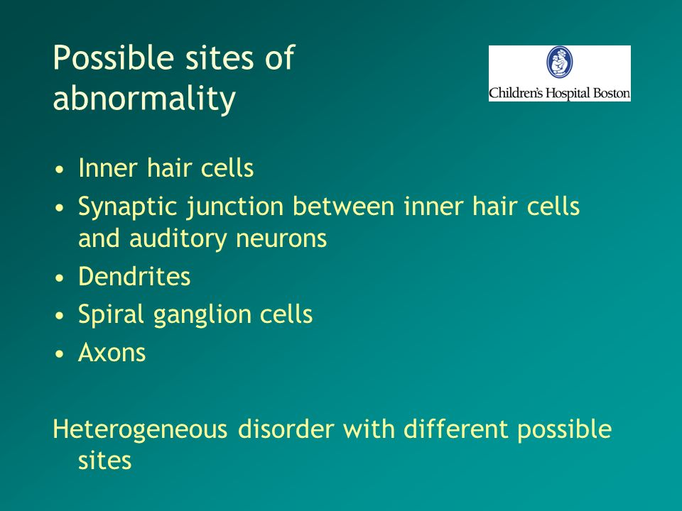 Possible sites of abnormality