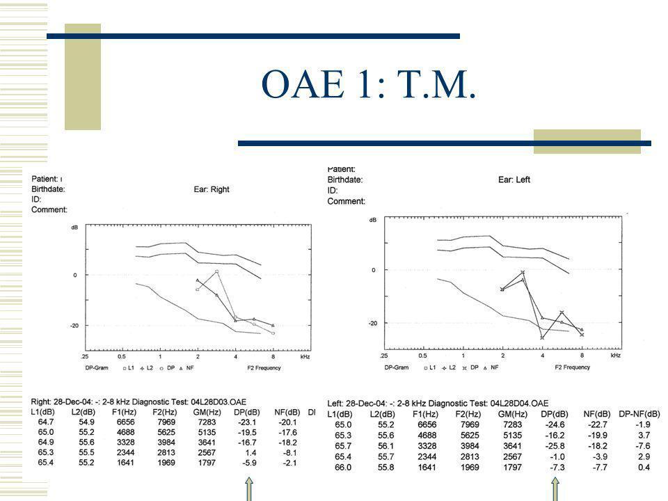 OAE 1: T.M.