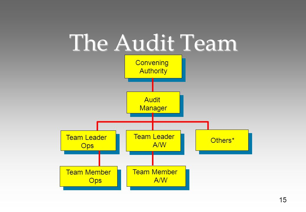 The Audit Team Convening Authority Audit Manager Team Leader Ops