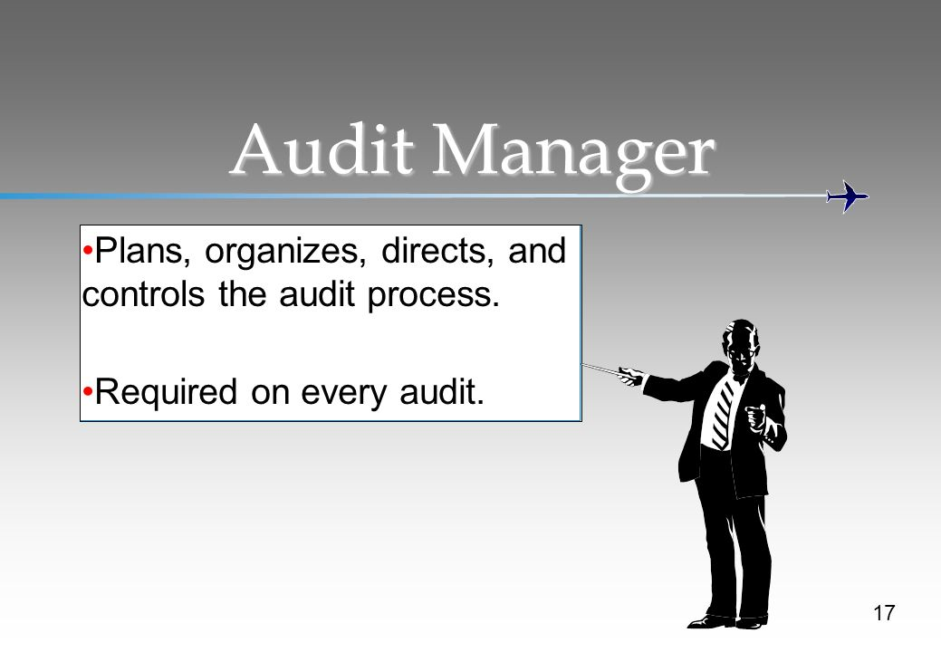 Audit Manager Plans, organizes, directs, and controls the audit process. Required on every audit.