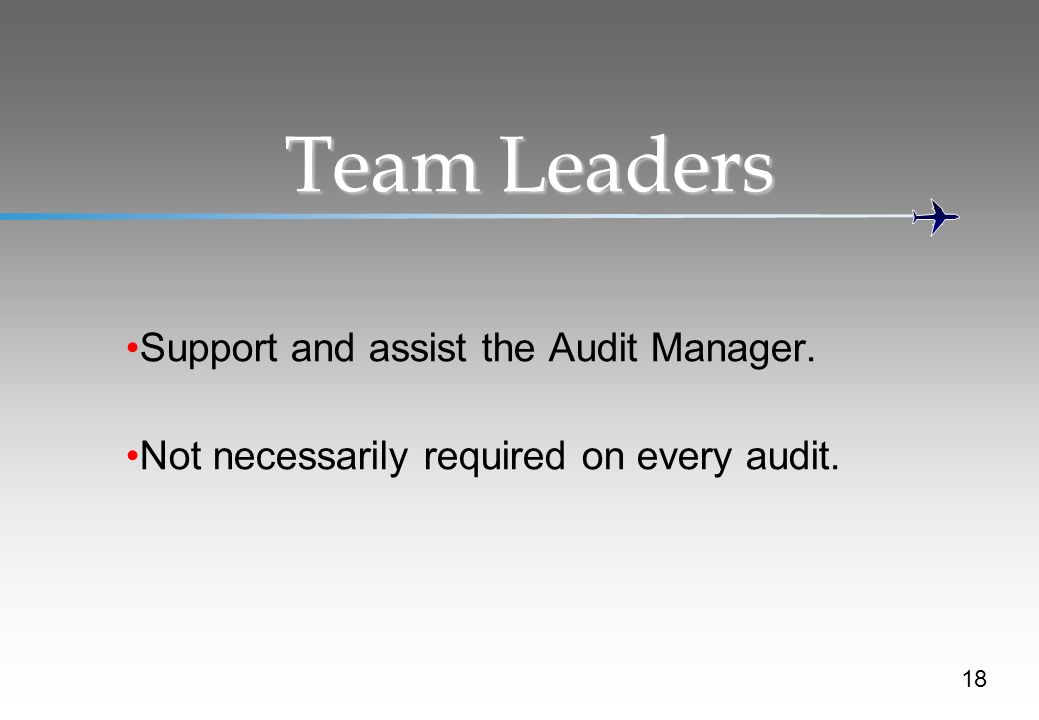 Team Leaders Support and assist the Audit Manager.