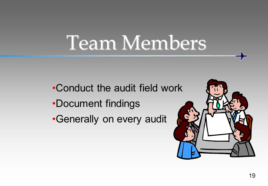 Team Members Conduct the audit field work Document findings