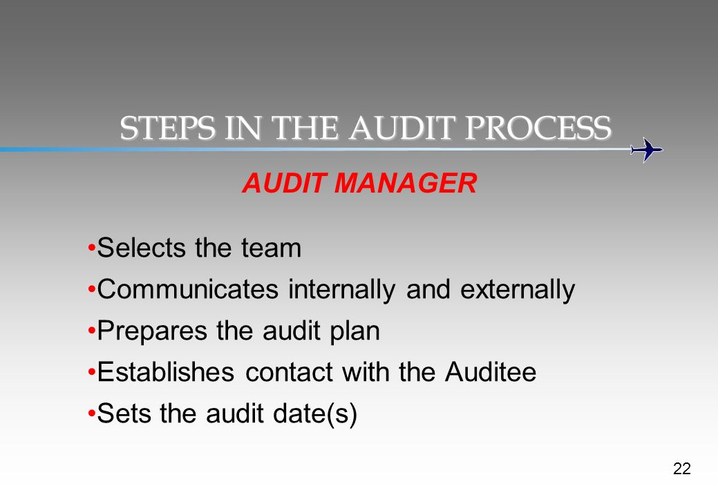 STEPS IN THE AUDIT PROCESS