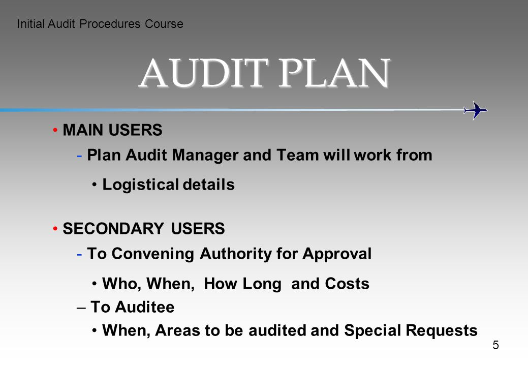 AUDIT PLAN MAIN USERS Plan Audit Manager and Team will work from