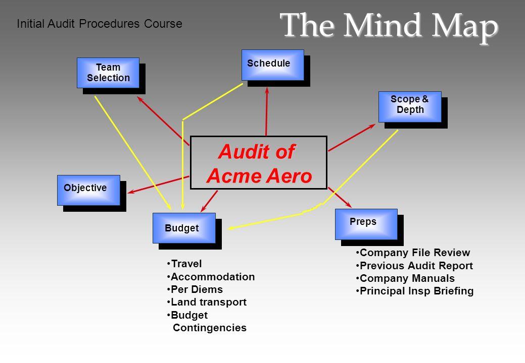 The Mind Map Audit of Acme Aero Initial Audit Procedures Course