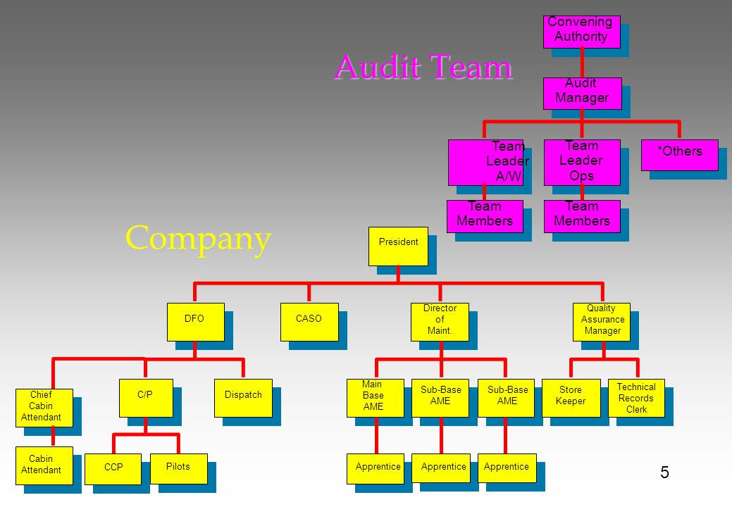 Audit Team Company 5 Convening Authority Audit Manager Team Leader A/W