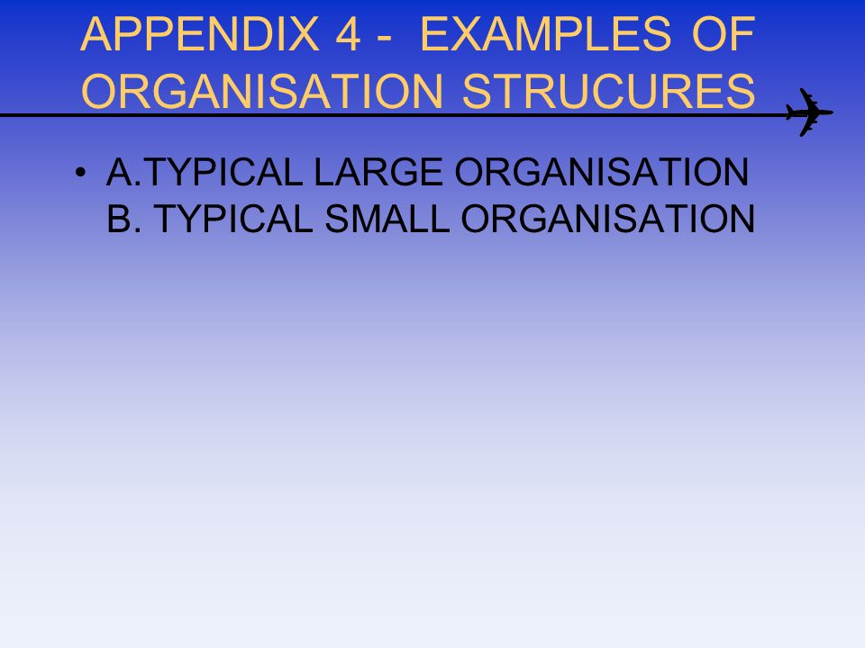 APPENDIX 4 - EXAMPLES OF ORGANISATION STRUCURES