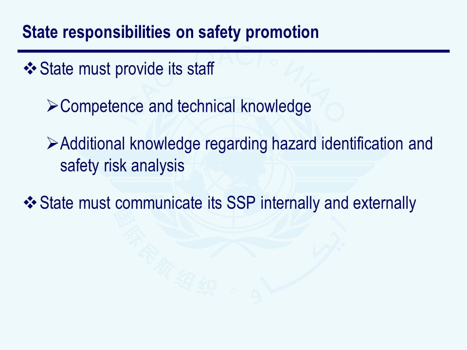 State responsibilities on safety promotion