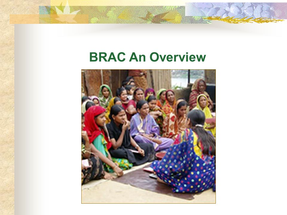BRAC An Overview