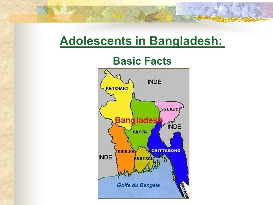 Adolescents in Bangladesh: