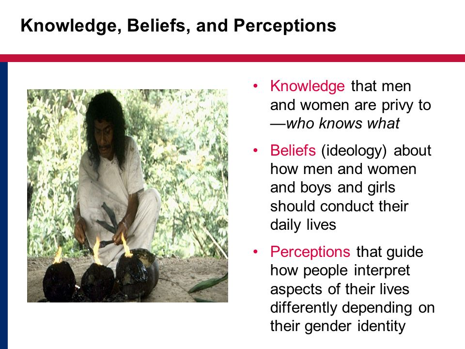 Knowledge, Beliefs, and Perceptions