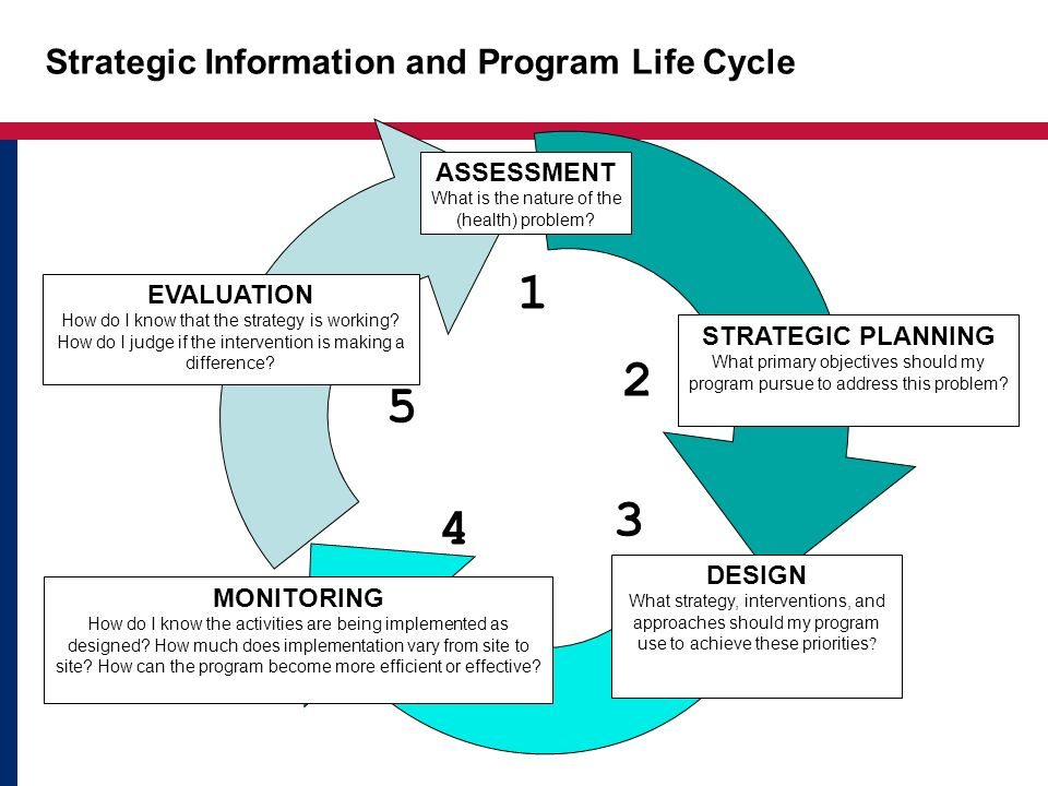 Strategic Information and Program Life Cycle