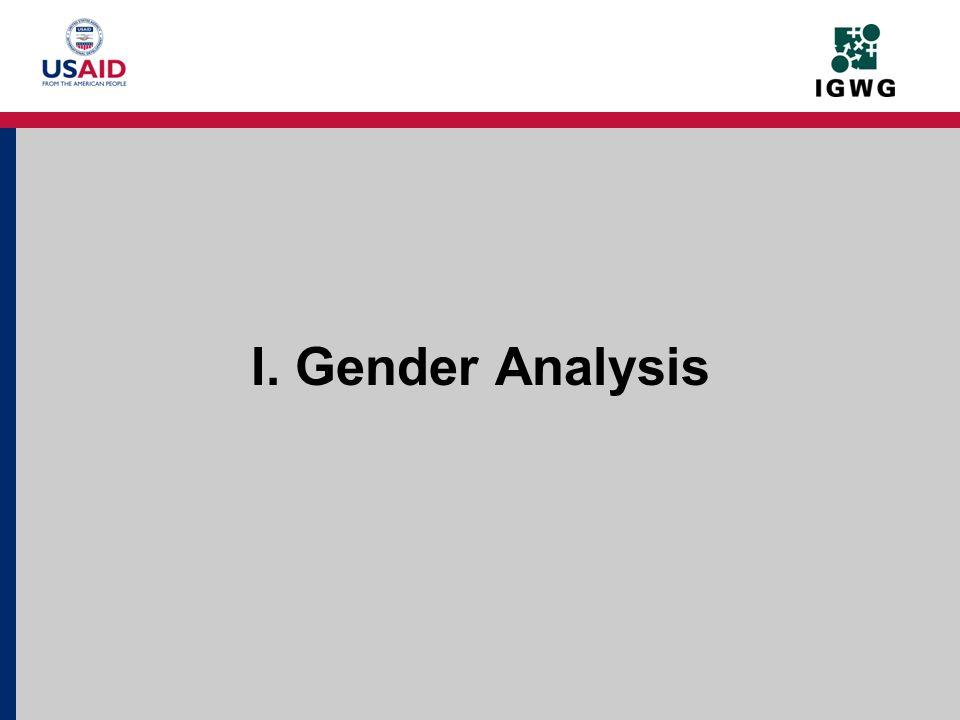 I. Gender Analysis