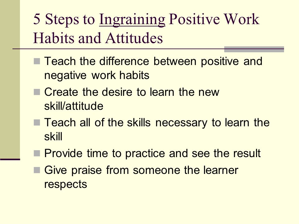 5 Steps to Ingraining Positive Work Habits and Attitudes