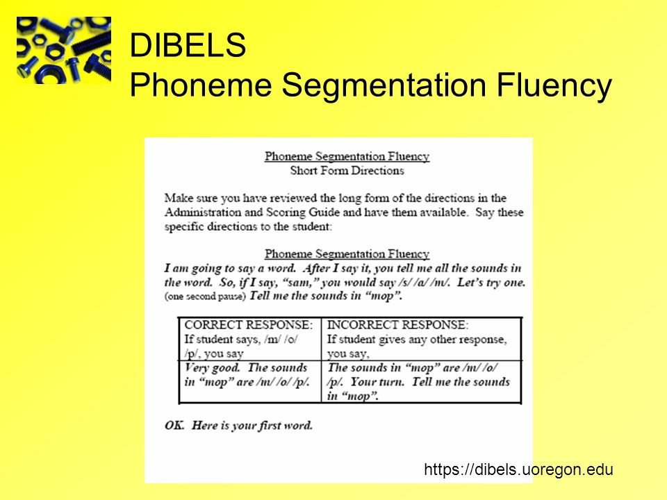 DIBELS Phoneme Segmentation Fluency