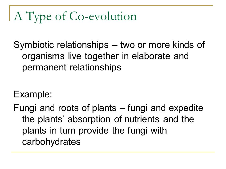A Type of Co-evolutionSymbiotic relationships – two or more kinds of organisms live together in elaborate and permanent relationships.