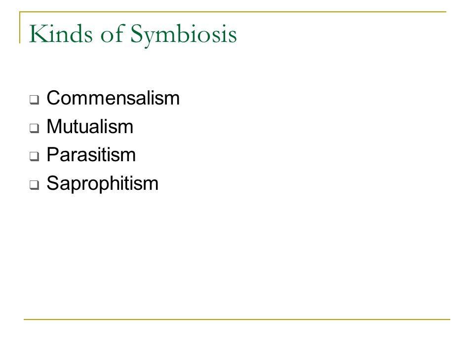Kinds of Symbiosis Commensalism Mutualism Parasitism Saprophitism