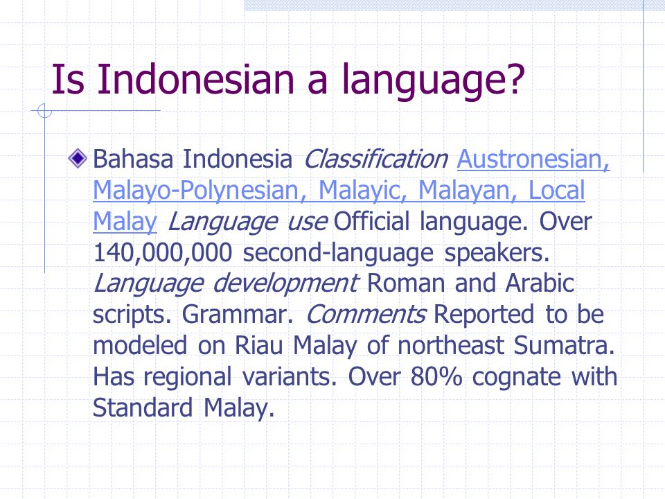 Is Indonesian a language