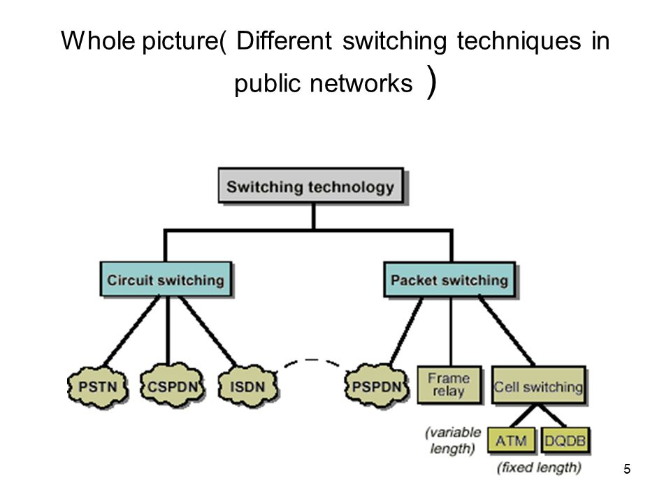 Whole picture( Different switching techniques in public networks )