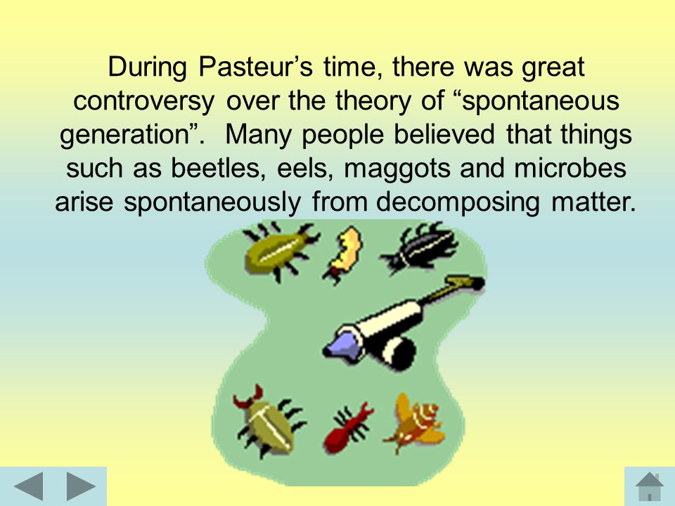During Pasteur's time, there was great controversy over the theory of spontaneous generation .