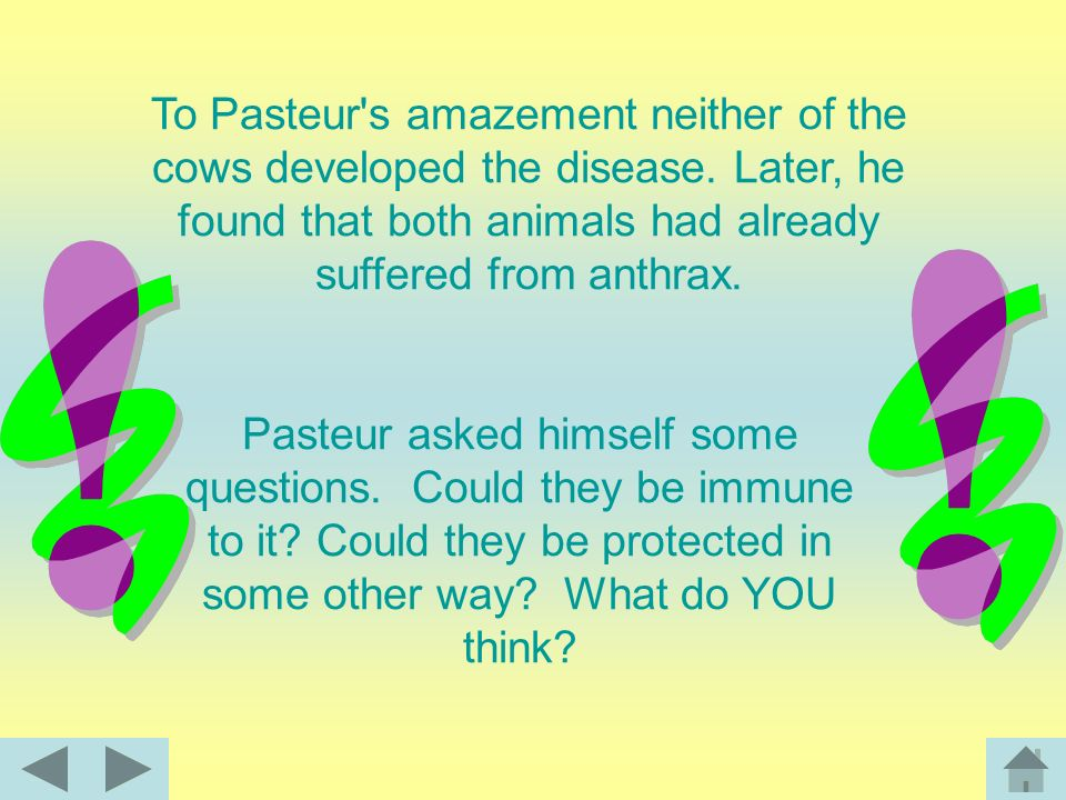 To Pasteur s amazement neither of the cows developed the disease