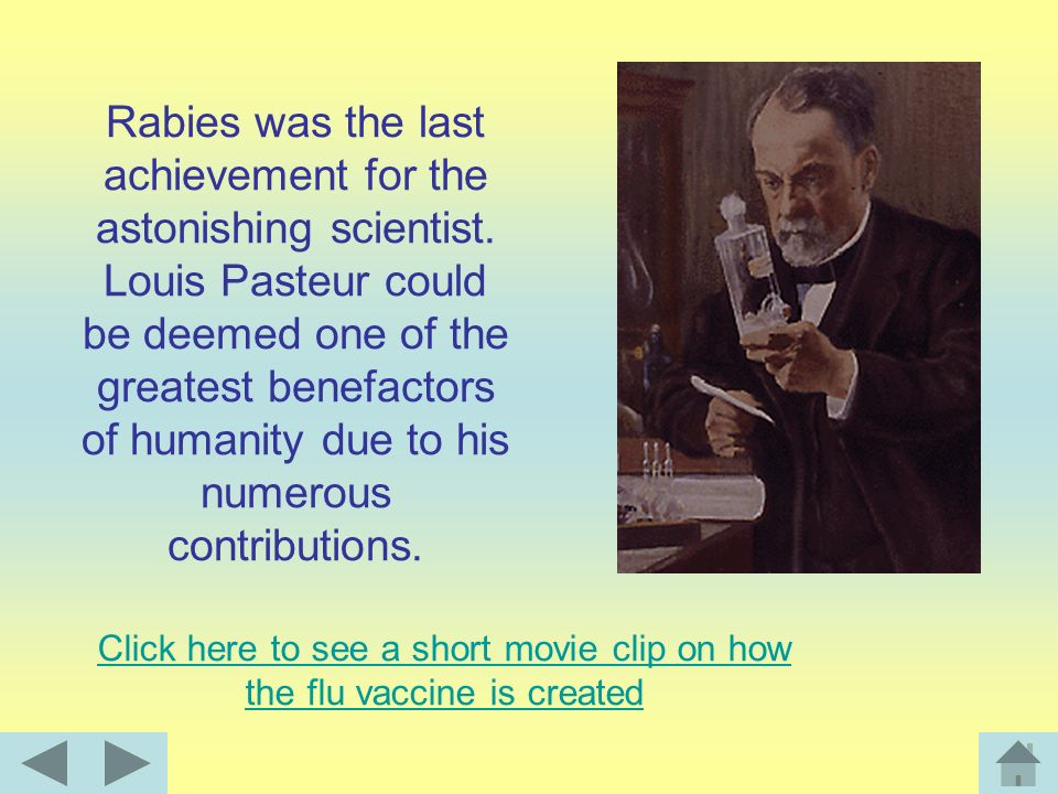 Click here to see a short movie clip on how the flu vaccine is created