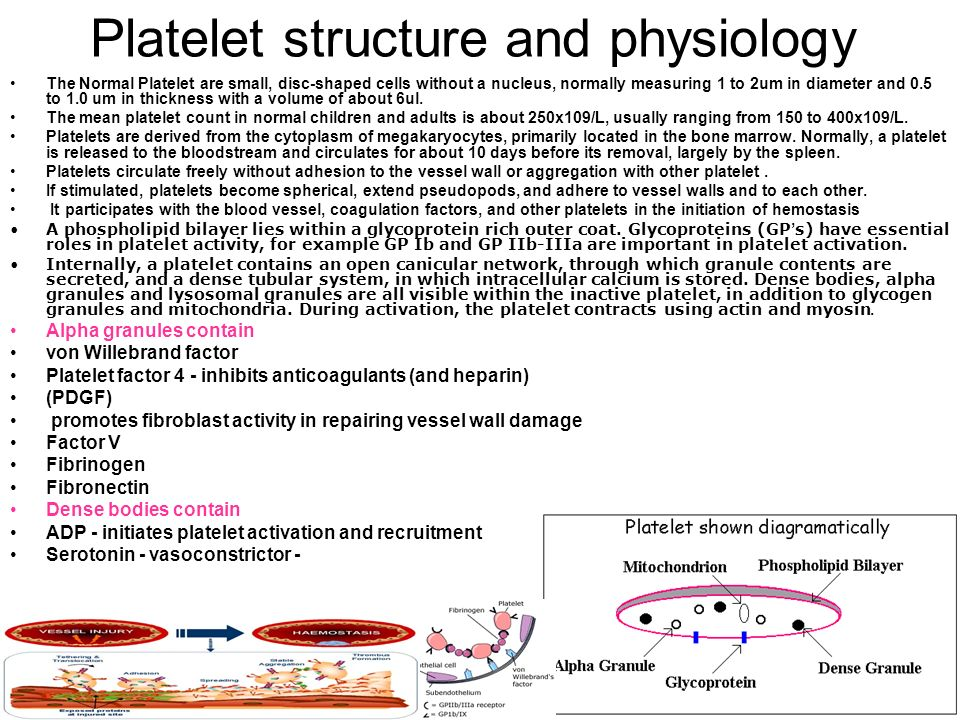 Platelet structure and physiology